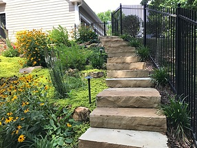 landscape design, hardscape, st. louis landscape, fence, rudbeckia, ground cover