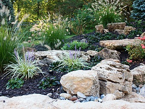 landscape design, st. louis landscape, color