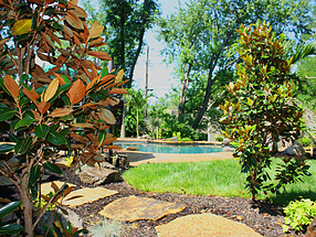 landscape design, st. louis landscape, privacy